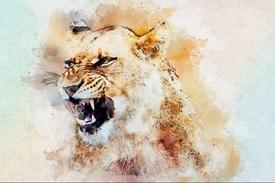 LionessStrength