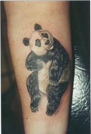 Panda_1999