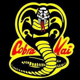CobraKai617