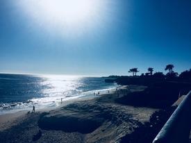 beachy14