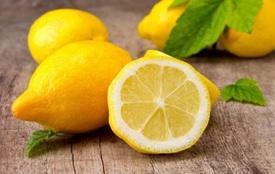 plain_lemon