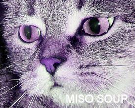 MisoSoup79
