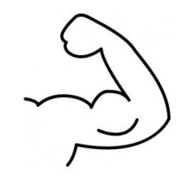 fitnesskrokodil